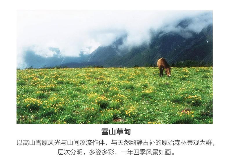 雪山徒步详情_09.jpg